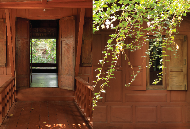 Jaspal-Web-Jungle-House-09.jpg